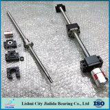 China-selbst gemachte Peilung-Kugel-Schraube für CNC (DFU Serie 16-100mm)