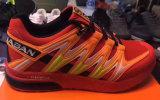 L'exportation chausse les chaussures de course des prix les plus inférieurs de chaussures de marque