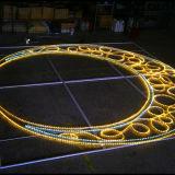 Ce&RoHS를 가진 Epistar LED 밧줄 빛 네온사인 빛