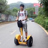 الصين مصنع [ف6] ميزان عربة كهربائيّة [سكوتر] كهربائيّة