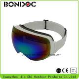Lunettes de neige de femmes de lunettes de ski de qualité