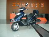 Elektrisches Fahrrad (CTM-305)