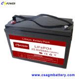 Satz 24V50ah der China-nachladbarer Batterie-LiFePO4 mit langer Lebensdauer 20years