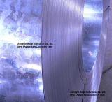 Bandes enduites d'acier de zinc pour le tube/glissières en acier (GI-005)