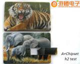 신용 카드 USB 섬광 드라이브 USB 인쇄되는 2.0 양측 Customzied 로고 (OM-P516)