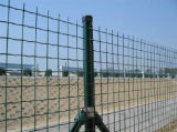 Enduit de PVC vague Euro Wire Mesh Fence FR1 en Chine
