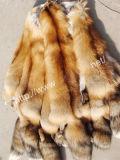 Red Fox Fur (004)
