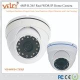 Китайский камеры CCTV поставщиков для использования вне помещений сети IP-камера видеонаблюдения
