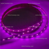 Tira purpúrea clara de la cinta LED de DC12V SMD2835 con el CE RoHS