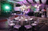 Resina cristalina Wedding la silla de acrílico de Transperant Tiffany Chiavari