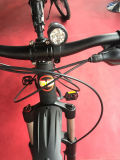 Bicycle Parts Front Bicycle LED Light (A2001081)