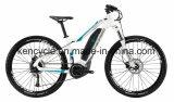 Горячий велосипед Bike сбывания e с Bike взрослого e Bike/E батареи лития (SY-E2707)