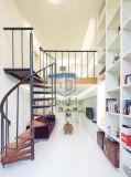 Escalera de caracol de madera de acero para la casa