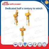 Mini double élévateur à chaînes électrique utilisé par vente chaude pour la grue de portique, grue de potence