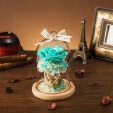 Flor natural da promoção de 100% para o casamento do Natal