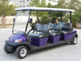Beste Qualitäts6 Seater elektrisches Fahrzeug für Verkauf