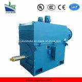 6kv/10kv Ykk 시리즈 Air-Air 냉각 고전압 3 단계 AC 모터 Ykk6302-10-710kw