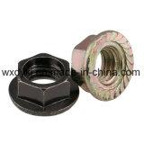 Noix galvanisée de bride de tête d'hexagone DIN 6923
