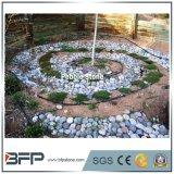 De Decoratieve Cobble van de tuin Stenen/Steen van de Kiezelsteen in China