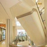 Plafond perforé d'aluminium acoustique