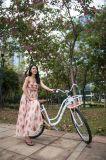 싼 판매 고품질 도시 Bicycle/No 사슬 자전거 새로운 디자인 자전거