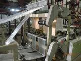 Línea bolso de Gfq 6 que hace la máquina