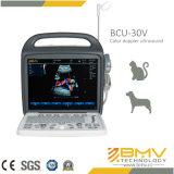 Ultrasuono portatile veterinario Scaner di Doppler di colore con lo SGS del CE