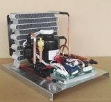 Purswave St19DC12hc DC12V kondensierender Geräten-Abkühlung-Kompressor-Geräten-Minikondensator