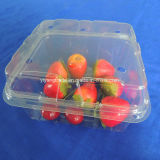 Wegwerf-pp.-Plastikmuffin-Verpackungs-Behälter