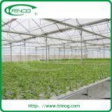 Invernadero de película agrícola agrícola de varias capas para lechugas