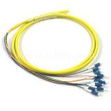 Tresse optique de fibre coloré par LC de fibre de 12 faisceaux