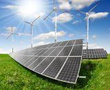 Pila solare solare del comitato 100W 150W 200W 250W 300W del modulo della Cina PV mono poli
