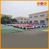 Pista de raza inflable de bola de Zorb del juguete de los juegos al aire libre del deporte para la venta (AQ16105-1)