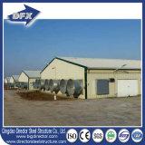 Fermes avicoles contrôlées de construction de cloche de poulet de structure métallique de Dfx