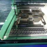 Diodo emissor de luz que ilumina o mini congelador do indicador do gelado/gabinete indicador de Gelato (F-QV680A-W)