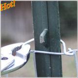 星オーストラリアのための鋼鉄フィールド塀のポストのピケット