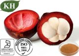 Hoher nahrhafter Mangostanfrucht-AuszugGarcinia Mangostana L Polyphenol, Alpha; - Mangosti