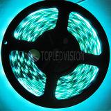 Striscia flessibile 60LEDs/M di alta qualità SMD5050 LED con il prezzo competitivo