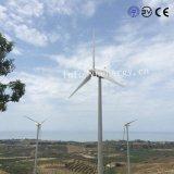 20kw 30kw 60kw Pitch vent générateur Tubine contrôlé pour la solution en réseau