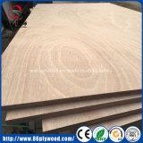 madera contrachapada comercial chapeada Bintangor/Okoume de 2-25m m