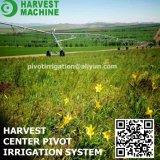 Systeem van de Irrigatie van de Spil van het Centrum van het Landbouwbedrijf van de landbouw Vier Systeem van de Irrigatie van de Beweging van Wielen het Zij