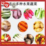 Einleitung des Frucht-Gemüse-Nahrungsmitteltrocknendes Geräten-Kartoffel-Trockners