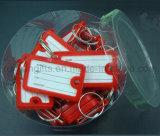 Le trousseau de clés en plastique d'identification, identifient le trousseau de clés