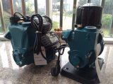 Wasser-Pumpe, selbstansaugende Wasser-Pumpe, (1AWZB250)