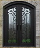 تقليديّة [كست يرون] باب تصميم لأنّ منزل
