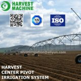 Het zonne Systeem van de Irrigatie van de Spil van het Centrum van de Irrigatie om Gras voor de Klanten van Australië met Installatie Te irrigeren