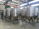 2000L het Bier die van de ambacht Unitank (ace-fjg-2L5) vergisten