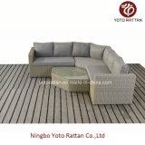 Nuovo sofà esterno del rattan impostato (1803)