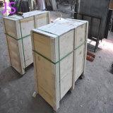 Plak 600*600mm*30mm van het Graniet van de aard voor de Plakken die van de Techniek wordt gebruikt