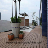 Cheapest Outdoor WPC Flooring
